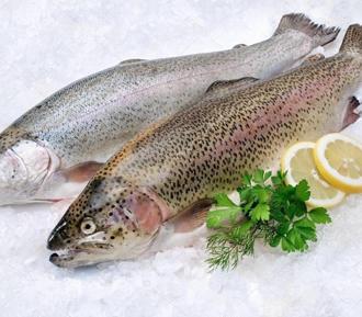 130 кг рыбы Форель, с температурой -18 градусов Цельсия, при окружающей температуре +20 градусов Цельсия, размещенного в термоконтейнере объемом 155 литров, изменит температуру с -18 градусов до «0» градусов при температуре наружного воздуха +20 градусов за день 14 часов